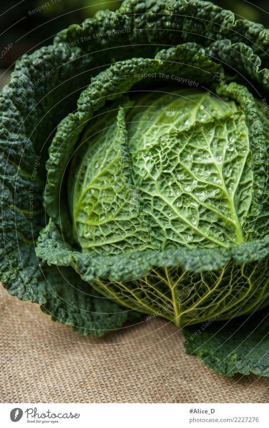 wirsingkohl Natur grün Winter Leben Lifestyle Gesundheit Hintergrundbild natürlich Lebensmittel Ernährung Wassertropfen Fitness nass lecker Gemüse Bioprodukte