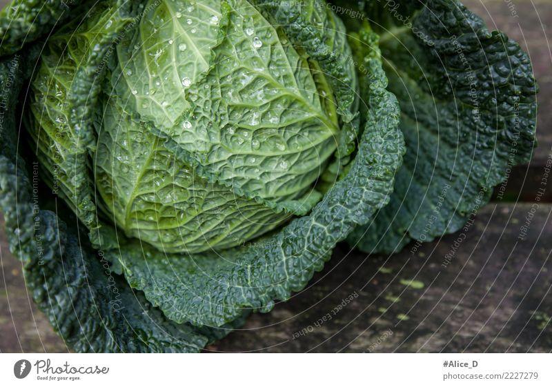 Wirsingkohl Lebensmittel Gemüse Salat Salatbeilage Kohl Ernährung Bioprodukte Vegetarische Ernährung Diät Fasten Lifestyle Gesunde Ernährung Winter Natur