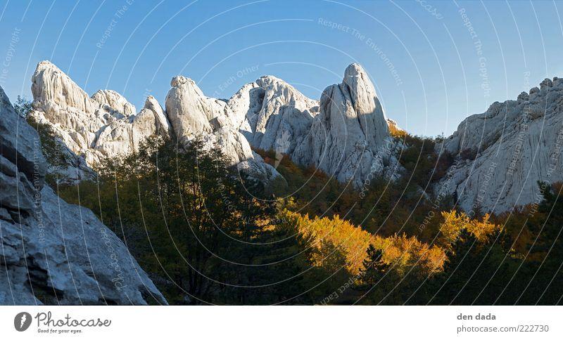 Bojinac in Kroatien / Velebit Ferien & Urlaub & Reisen Ausflug Ferne Freiheit Berge u. Gebirge Natur Landschaft Wolkenloser Himmel Herbst Schönes Wetter Wald