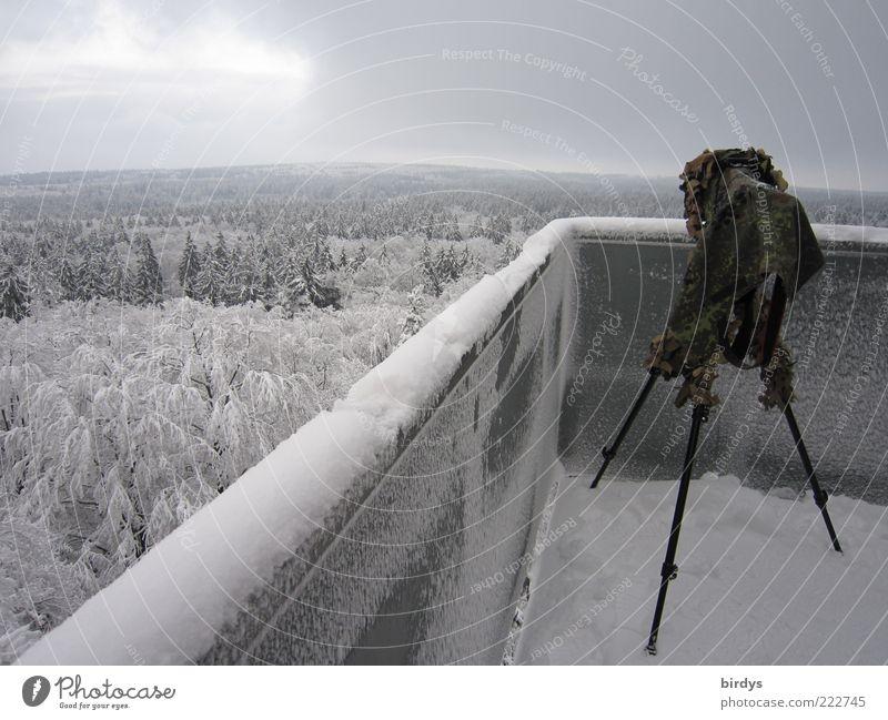 @photocase: happy birthday !!! Natur Pflanze Winter Wald Ferne Landschaft Schnee oben Mauer Horizont Eis warten stehen Frost Turm beobachten