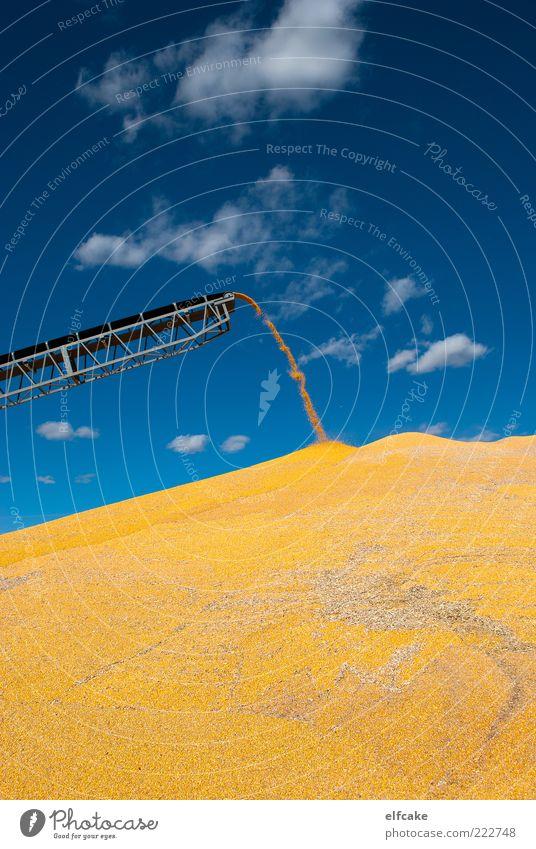 Corn Mountain Series, Aufnahme #3 Maschine Waage Erneuerbare Energie Energiekrise Umwelt Landschaft Pflanze Himmel Wolken Herbst Schönes Wetter Nutzpflanze Feld