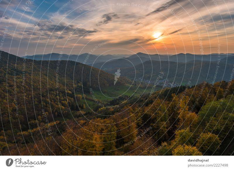 Pfälzerwald Ferien & Urlaub & Reisen Tourismus Ausflug Abenteuer Ferne Freiheit Sightseeing wandern Natur Landschaft Himmel Wolken Horizont Sonne Sonnenlicht