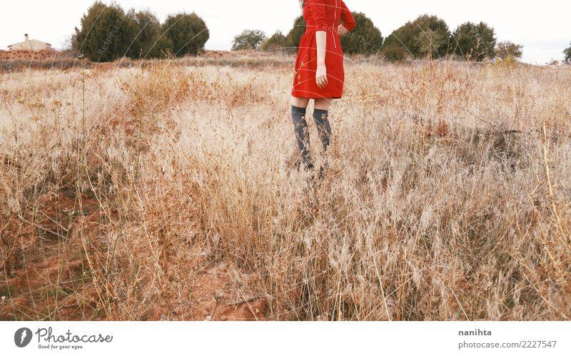 Junge Frau auf einem Gebiet von trockenen Anlagen Mensch Natur Jugendliche Sommer schön Landschaft Baum rot Freude 18-30 Jahre Erwachsene Umwelt Lifestyle