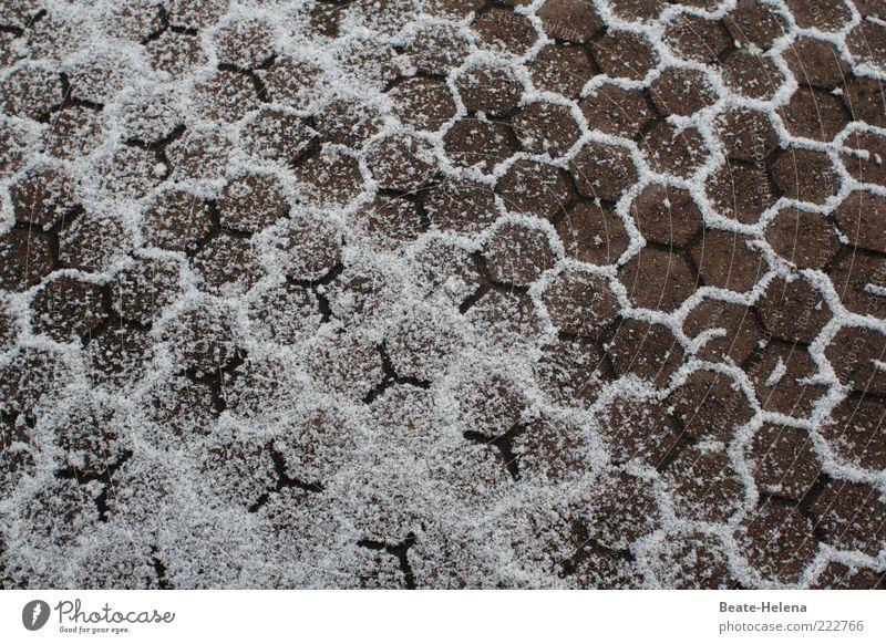 Schneewaben weiß grau Stein Hintergrundbild Bodenbelag Geometrie Symmetrie Pflastersteine Fuge Bodenplatten Umrisslinie Wintertag Pulverschnee winterfest