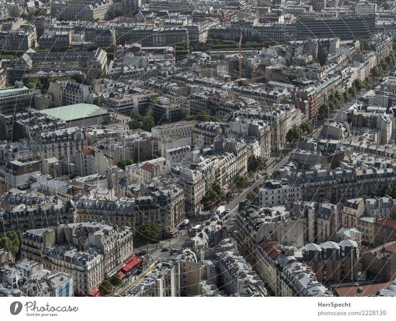 Boulevard du Montparnasse Paris Hauptstadt Stadtzentrum Altstadt Haus Gebäude Architektur außergewöhnlich schön grau Überblick Ferne Aussicht Häuserzeile Allee