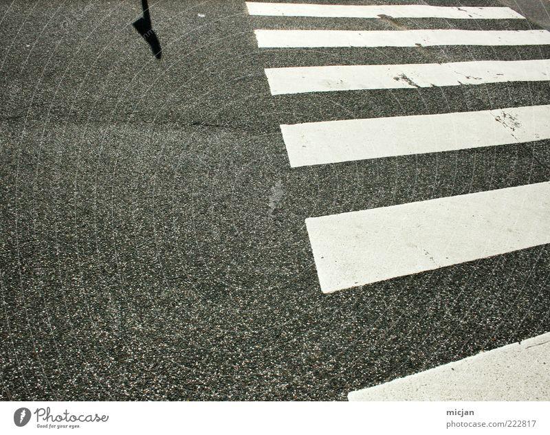 Incognito |Unknown destination weiß Einsamkeit Straße grau Stein Wege & Pfade Schilder & Markierungen Sicherheit Boden Streifen Asphalt Verkehrswege Symmetrie parallel Zebrastreifen Dinge