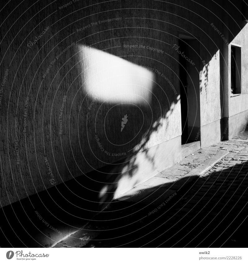 Irrlicht Haus Mauer Wand Fassade Fenster Tür Hofeinfahrt Wege & Pfade Kopfsteinpflaster außergewöhnlich dunkel unklar Schwarzweißfoto Außenaufnahme