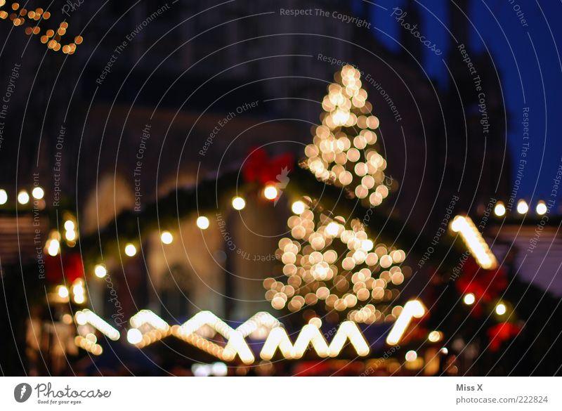 Ulmer Weihnachtsmarkt leuchten glänzend hell Weihnachtsbaum Markt Marktstand Platz Kirche Farbfoto mehrfarbig Außenaufnahme Dämmerung Nacht Kunstlicht Licht