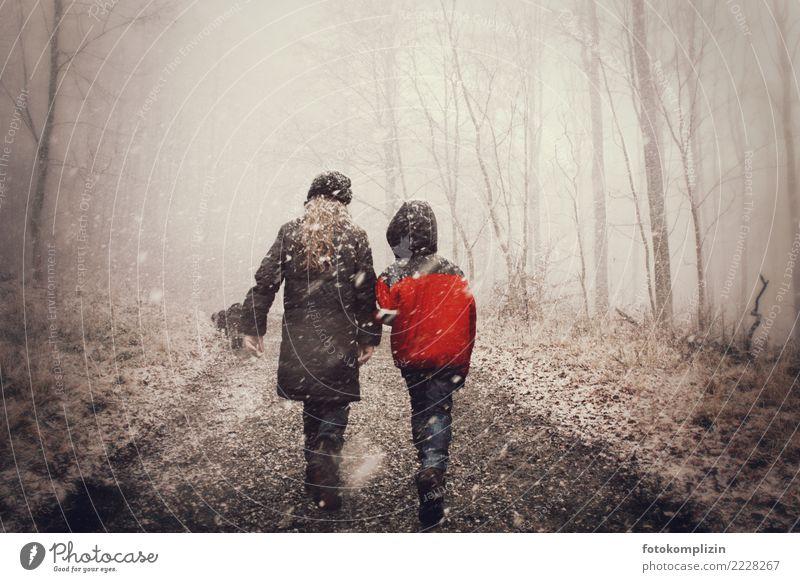 winter märchen kinder Kind Mensch Mädchen Winter Wald sprechen Wege & Pfade Schnee Junge Zusammensein Freundschaft gehen wandern Nebel Kindheit Kommunizieren