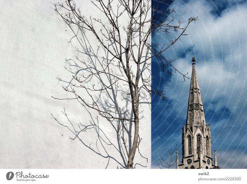 Merseburg Himmel Stadt Baum Wolken Religion & Glaube Wand Frühling Gebäude Mauer Deutschland Fassade Kirche Schönes Wetter groß hoch Spitze