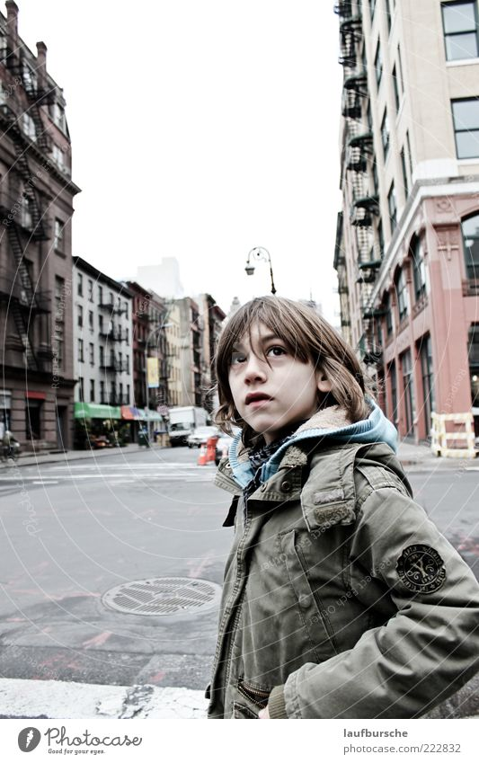 Warum Kinder fragen müssen Mensch Stadt grün schön rot Ferien & Urlaub & Reisen Haus Straße Junge grau träumen Gebäude Denken maskulin