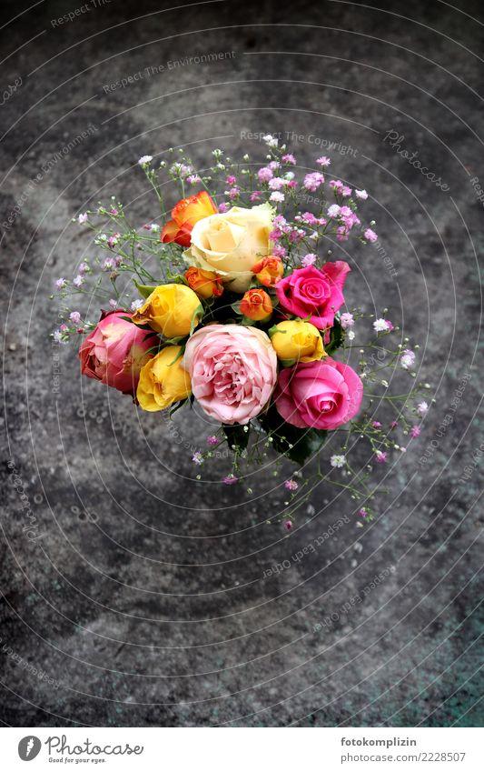 blumen_rosen-1 Dekoration & Verzierung Valentinstag Muttertag Geburtstag Blühend leuchten Duft niedlich Romantik Hoffnung Trauer Nostalgie Blume Blumenstrauß
