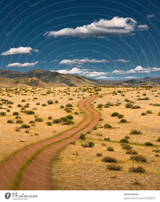 Himmel Natur Ferien & Urlaub & Reisen grün Baum Pflanze Sonne Sommer Wolken Umwelt Landschaft Straße Wiese Berge u. Gebirge Gras Freiheit