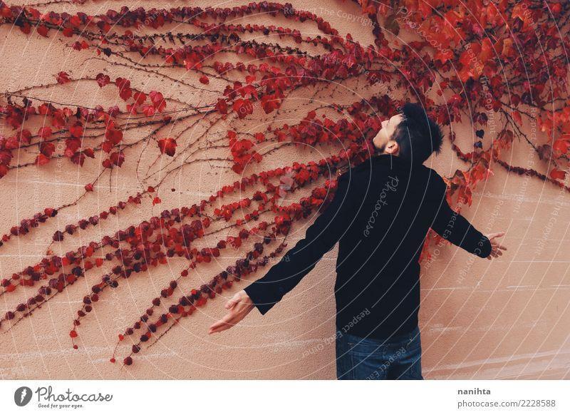 Junger Mann vor einer Wand voll der roten Blätter Stil Design exotisch Mensch maskulin Jugendliche 1 18-30 Jahre Erwachsene Kunst Natur Pflanze Herbst Efeu