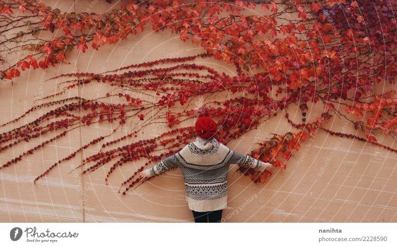 Hintere Ansicht einer Frau und der Wand mit einem roten Efeu Mensch Natur Jugendliche Pflanze Blatt ruhig Winter 18-30 Jahre Erwachsene Umwelt Herbst Gesundheit