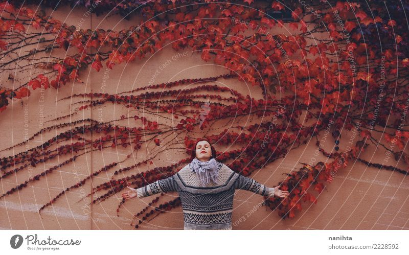 Junge Frau in einer Wand voll der Herbstblätter Mensch Natur Jugendliche Pflanze schön rot Erholung Blatt Winter 18-30 Jahre Erwachsene Leben kalt