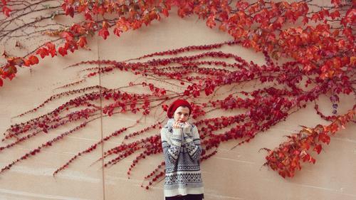 junge Frau, die nahe einem roten Efeu aufwirft Mensch feminin Junge Frau Jugendliche 1 18-30 Jahre Erwachsene Natur Pflanze Herbst Winter Blatt Mauer Wand