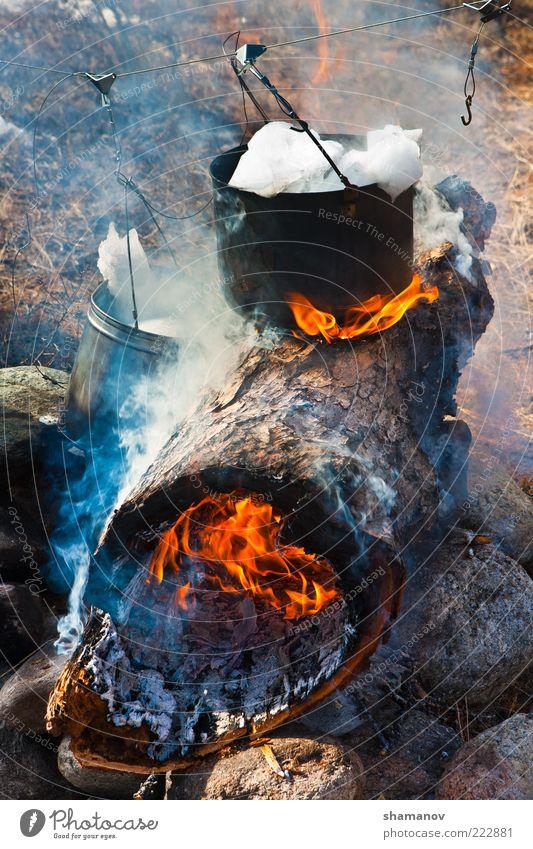 Zubereitung von Mahlzeiten am Feuer Ferien & Urlaub & Reisen Safari Expedition Winter Schnee Natur Eis Frost Baum Eimer Kohlen Stillstand heizen Wasserkessel