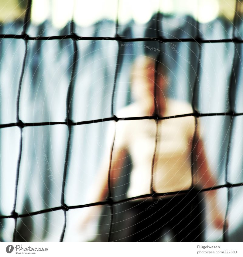Volleyball Freizeit & Hobby Spielen Ballsport diszipliniert Ausdauer Volleyballnetz Volleyballfeld Volleyballer Sportveranstaltung Sportplatz Sportler Netz