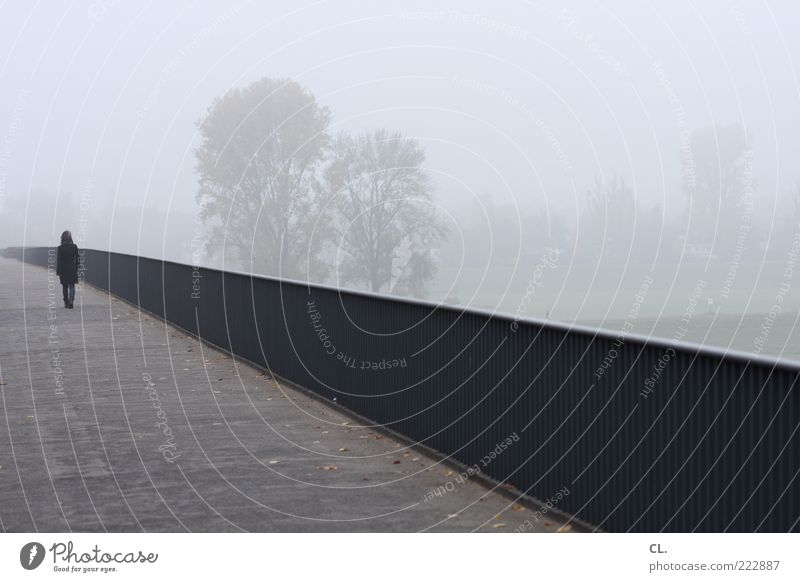 spaziergang im nebel Junge Frau Jugendliche 1 Mensch Landschaft Herbst schlechtes Wetter Wind Nebel Brücke Fußgänger kalt trist grau Traurigkeit Sorge