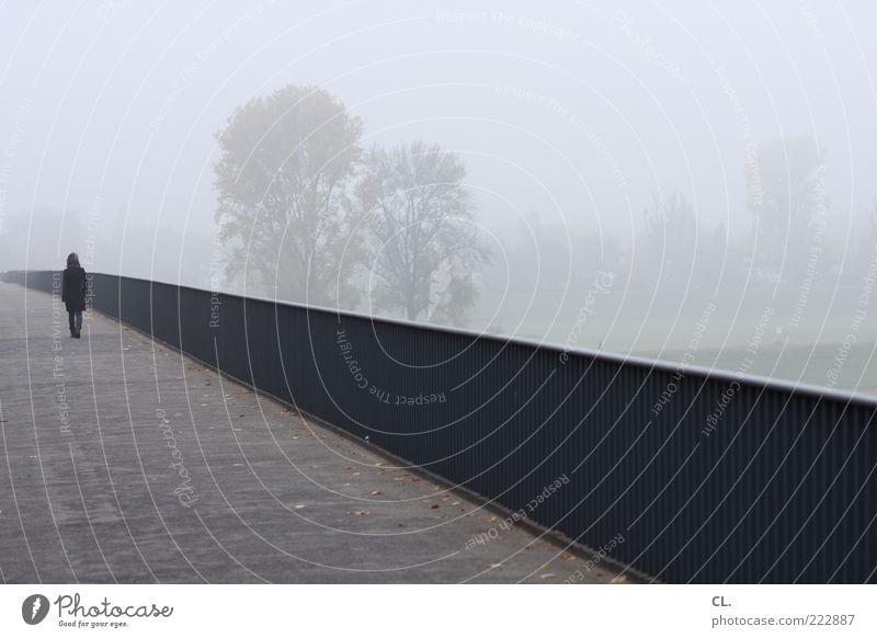 spaziergang im nebel Mensch Jugendliche Einsamkeit ruhig Erwachsene Landschaft kalt Herbst Wege & Pfade grau Traurigkeit Wind Nebel Junge Frau Brücke trist