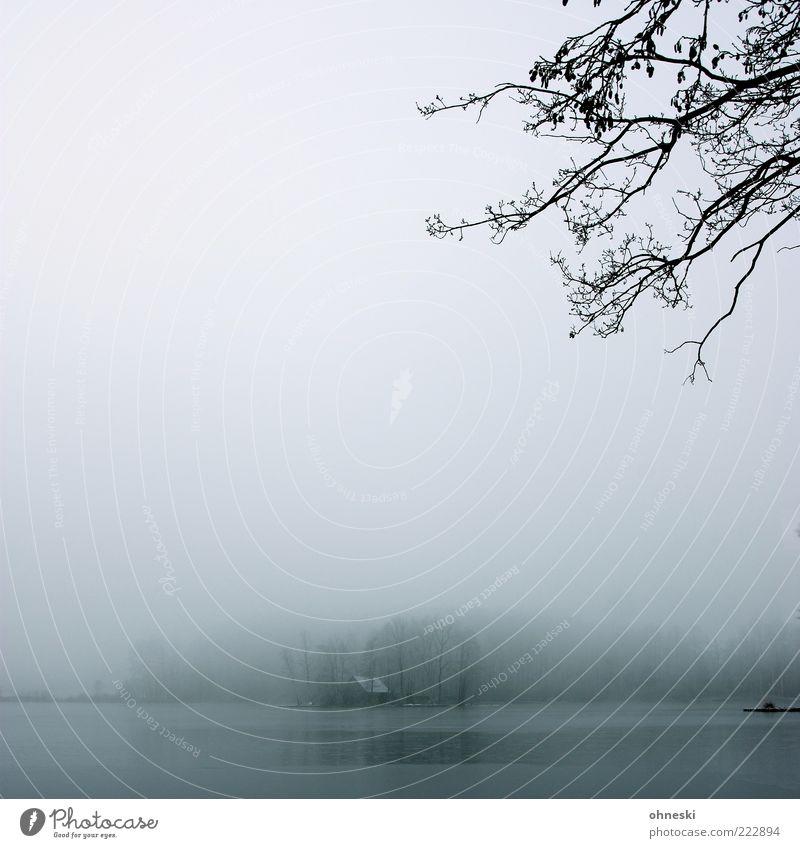 Haus am See Natur Baum Winter Einsamkeit dunkel kalt grau Landschaft Gebäude Eis Nebel Trauer Frost Hütte