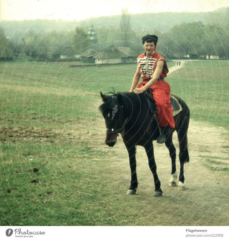 Irgendwo in Rußland Mensch Sport Wiese träumen Horizont Ausflug Lifestyle Pferd maskulin Hoffnung trist Kirche Häusliches Leben Jagd Russland kämpfen