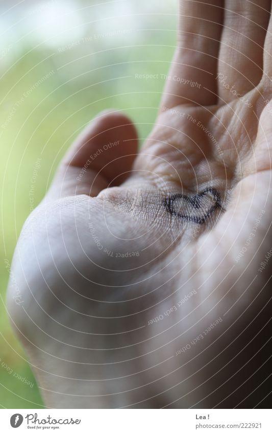 ...in der Hand Finger Handfläche Herz Liebe zeichnen Romantik Kreativität Hautfarbe grün Farbfoto Innenaufnahme Detailaufnahme Tag Licht Schatten