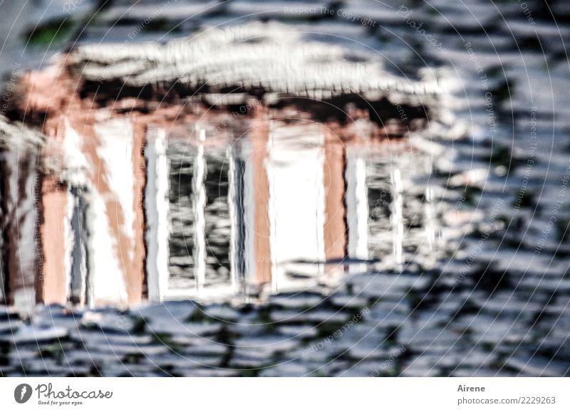 hineinschauen Urelemente Wasser Kleinstadt Altstadt Fachwerkhaus Fachwerkfassade Fassade Straße Kopfsteinpflaster Straßenbelag Pfütze Reflexion & Spiegelung alt
