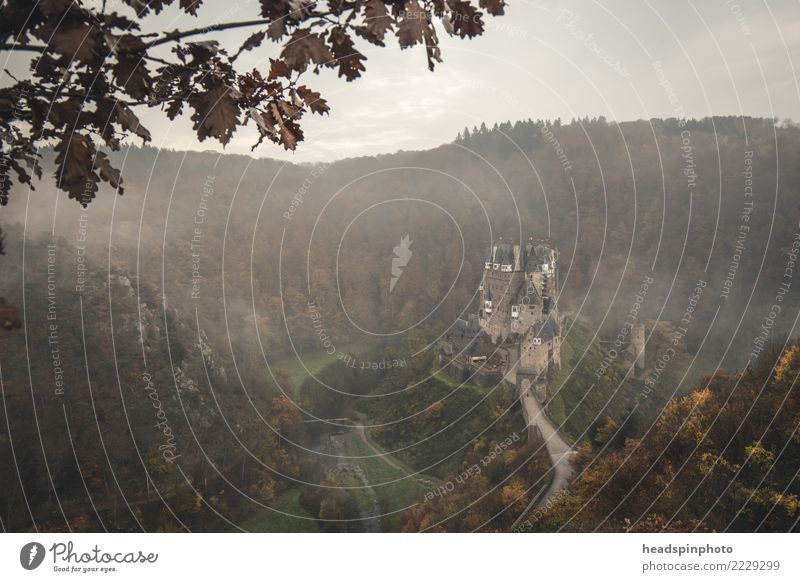 Burg Eltz umgeben von Nebel & Wald im Herbst wandern Natur Landschaft Wolken Wind Berge u. Gebirge Deutschland Burg oder Schloss dunkel gruselig kalt
