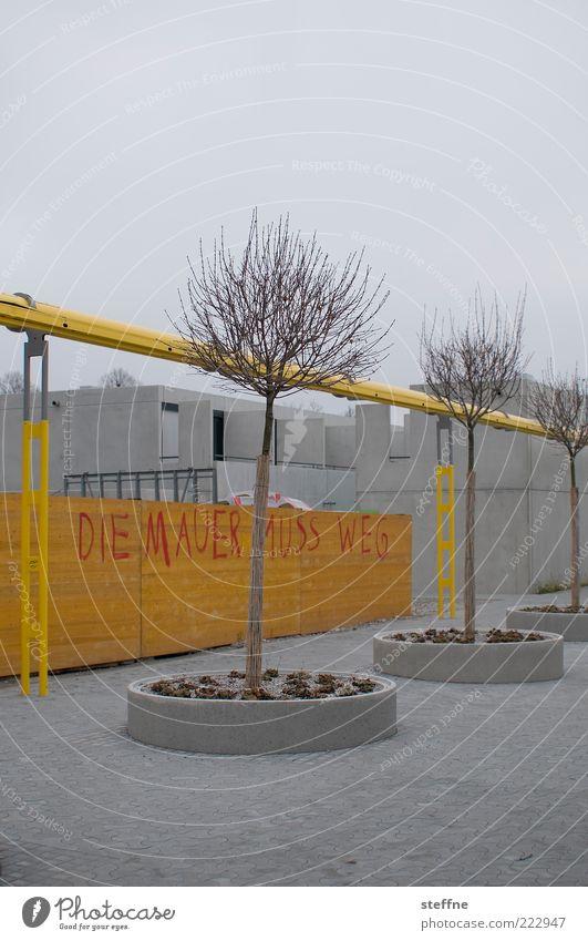 DIE MAUER _ _ _ _ _ _ G Baum Winter Haus gelb Wand Herbst grau Mauer Graffiti Beton trist München Redewendung Schmiererei graue Wolken