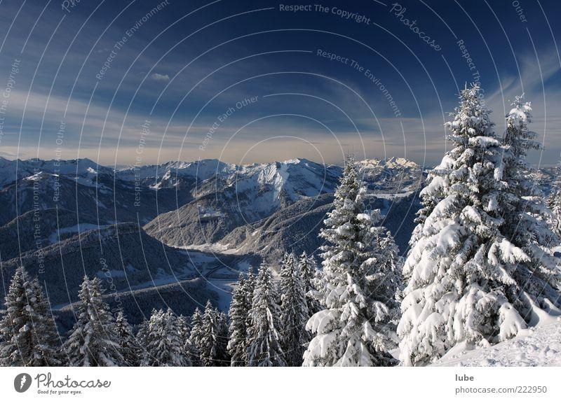 Schneelandschaft Ferne Freiheit Winter Berge u. Gebirge Umwelt Natur Landschaft Klima Schönes Wetter Eis Frost Felsen Alpen Gipfel Schneebedeckte Gipfel blau