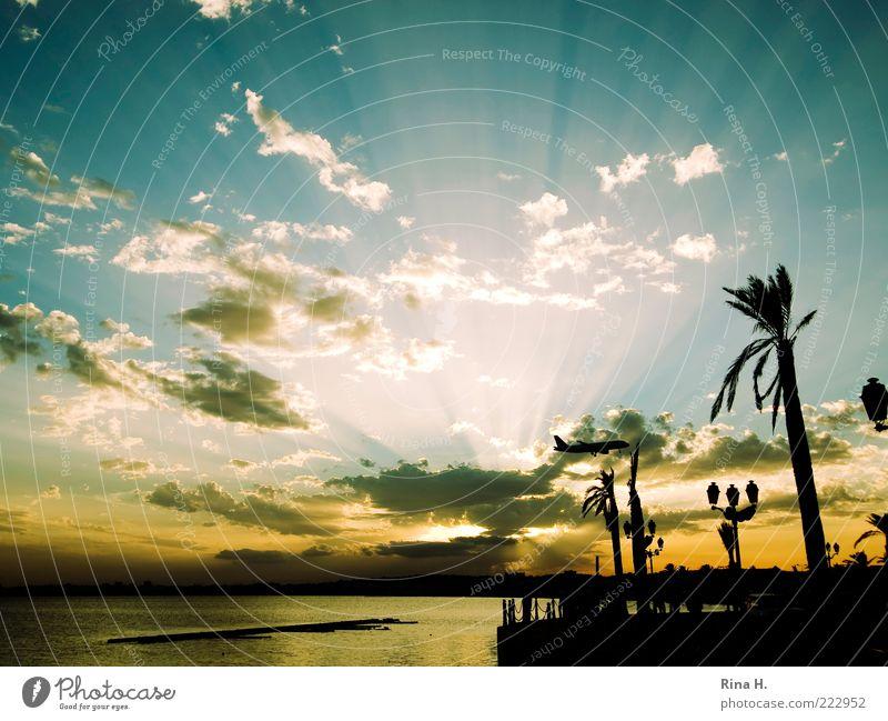 Ready for Landing Lifestyle Ferien & Urlaub & Reisen Tourismus Ferne Himmel Horizont Sonnenaufgang Sonnenuntergang Herbst Wetter Schönes Wetter Tunesien