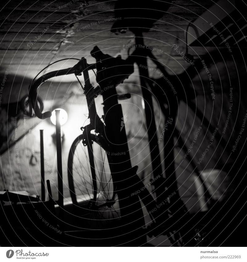 Radsportpause alt Stimmung Fahrrad Freizeit & Hobby ästhetisch authentisch Lifestyle Technik & Technologie hängen parken Reifen Garage Fahrradrahmen Keller