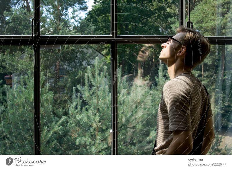 Am Fenster Mensch Natur Jugendliche Sonne ruhig Erholung Leben Fenster Freiheit Gefühle Umwelt Garten träumen Erwachsene Zufriedenheit Zeit