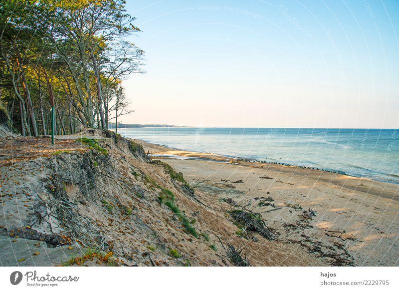 Strand der Ostsee in Orzechowo, Polen Freizeit & Hobby Ferien & Urlaub & Reisen Sommer Meer Wolken Baum Riff wild blau Einsamkeit Idylle Sandstrand Dünen