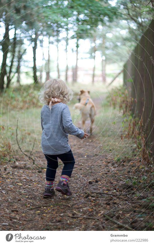 Spaziergang Mensch Kind Kleinkind Mädchen 1 Tier Haustier Hund Freude Gassi gehen Farbfoto Außenaufnahme Wegsehen Rückansicht Ganzkörperaufnahme blond Wand