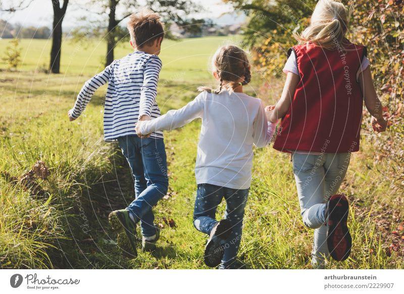 Kinder laufen in der Wiese im Herbst Mensch Natur Ferien & Urlaub & Reisen Freude Mädchen Leben Lifestyle Gesundheit Wege & Pfade feminin Junge Spielen