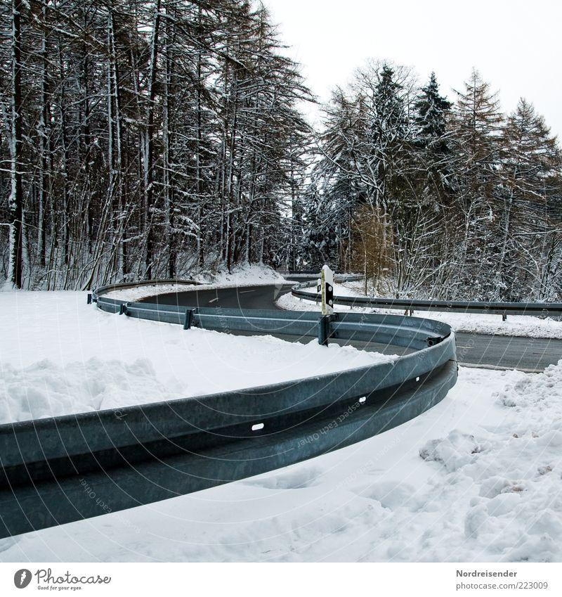 Schwingung Natur Winter Straße Wald kalt Schnee Wege & Pfade Eis Verkehr Frost Klima Zeichen Verkehrswege Kurve Glätte gekrümmt