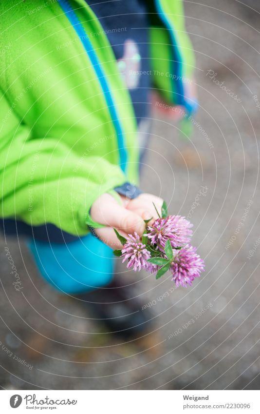 Wiesenfund Sinnesorgane ruhig Meditation Kindererziehung Kindergarten Schulkind Mädchen Junge Geschwister Bruder Schwester Kindheit Hand 1 Mensch Sammlung