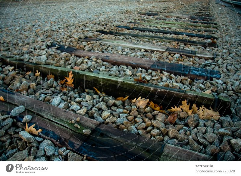 Noch nicht mal Abstellgleis Umwelt Natur Landschaft Erde Herbst Verkehr Verkehrswege Schienenverkehr Gleise Schienennetz Einsamkeit stilllegen schwelle Kies