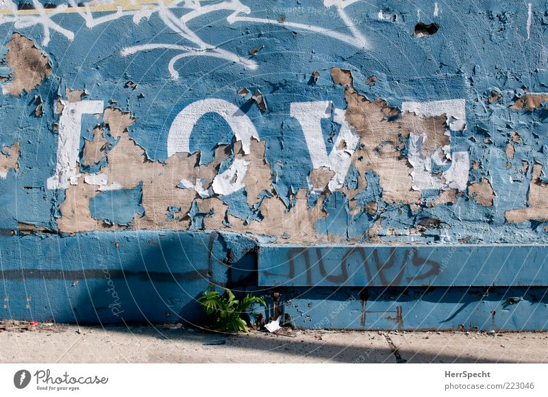 ...is all you need alt blau weiß Liebe Wand Graffiti grau Stein Mauer Farbstoff Fassade Beton Schriftzeichen Bürgersteig trashig verwittert