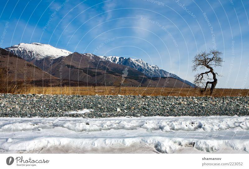 Kap Im Winter gegraben mit einem Typ am Berg Ferien & Urlaub & Reisen Expedition Schnee Berge u. Gebirge Umwelt Natur Landschaft Himmel Wolken Eis Frost Baum