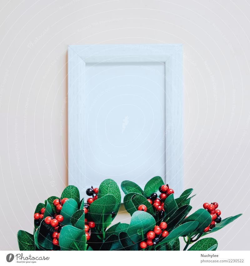 Modell des leeren Fotorahmens mit Grünpflanze Natur Pflanze Farbe schön grün weiß rot Blatt gelb Lifestyle Stil Design Textfreiraum hell retro