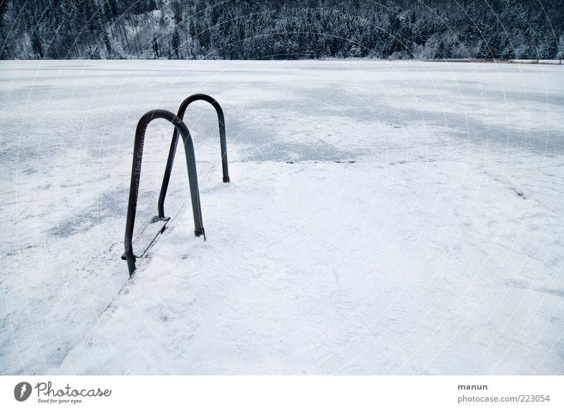 Kaltbaden Winter Schnee Winterurlaub Sportstätten Schwimmbad Natur Landschaft Wasser Eis Frost Wald Seeufer Badesee frieren frisch kalt natürlich Vorfreude