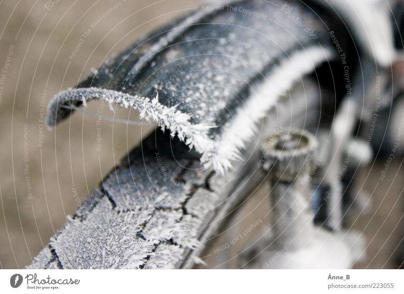 icecycle Winter Fahrrad Schutzblech Reifenprofil kalt stachelig Eis Frost Dynamo Bildausschnitt Anschnitt Raureif Eiskristall Rad Menschenleer Farbfoto
