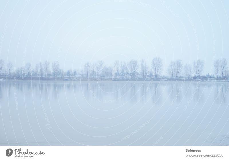 Eiseskälte Winter Schnee Umwelt Natur Landschaft Wasser Himmel Wolkenloser Himmel Klima Frost Pflanze Baum Küste Seeufer Coolness einfach frisch natürlich
