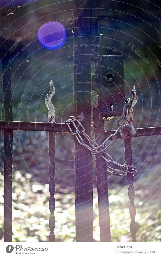 verschlossen Sonnenaufgang Sonnenuntergang Schönes Wetter Tor Metall Schloss Gefühle Einsamkeit Ende Verbote Verfall Vergänglichkeit verlieren Zeit geschlossen