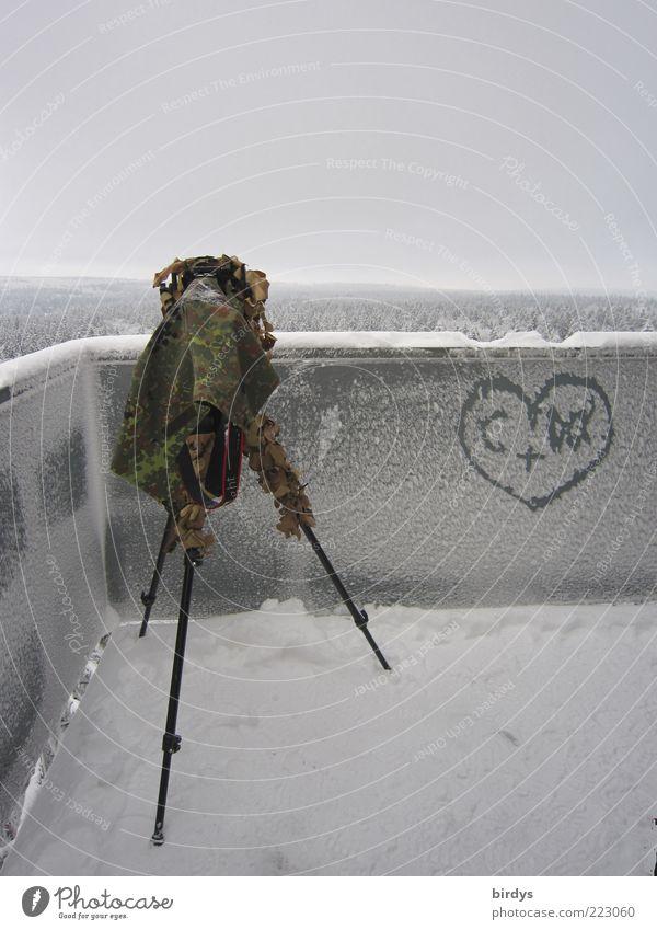 Love vs. frost Videokamera Fotokamera Natur Landschaft Winter Schnee Wald Turm beobachten hoch kalt Vorfreude Leidenschaft Liebe Romantik anstrengen Ferne