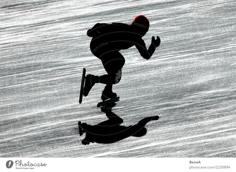 Silhouette eines Eisschnellläufers im Gegenlicht Mensch Winter Sport Bewegung ästhetisch laufen Geschwindigkeit Fitness sportlich Sport-Training